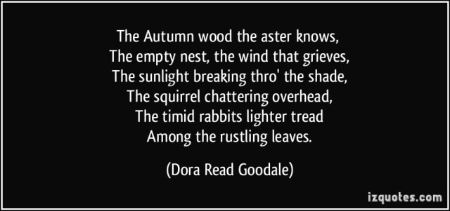 quote-the-autumn-wood-the-aster-knows-the-empty-nest-the-wind-that-grieves-the-sunlight-breaking-dora-read-goodale-232589