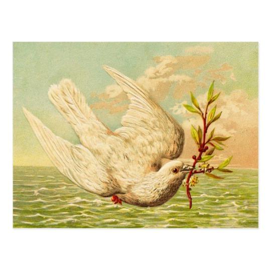 vintage_peace_dove_postcard-r4b5123242c18432ab8ad2d45bf2c183f_vgbaq_8byvr_540